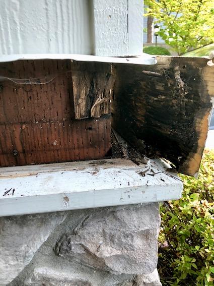 House Rot Repair